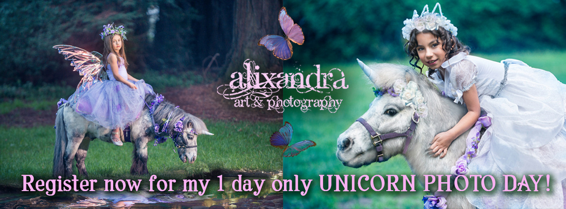 Unicorn Photographs in Santa Cruz County,