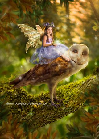 Spring Fairy Owl Journey